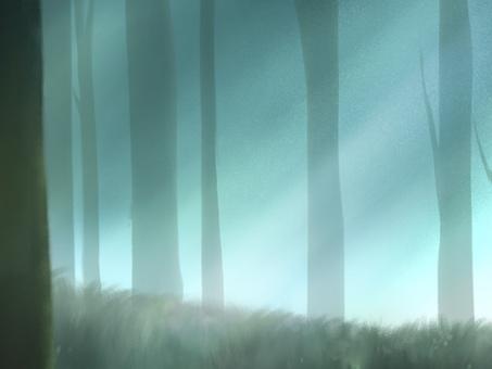 夢幻般的森林背景圖