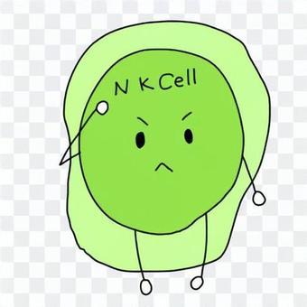自然殺傷細胞