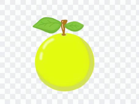 水果柚子柚子蘋果