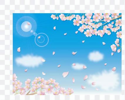 櫻花_藍天1
