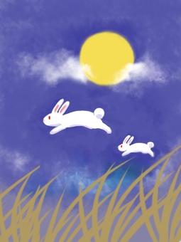 달과 토끼