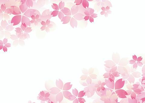 Gentle cherry blossom white