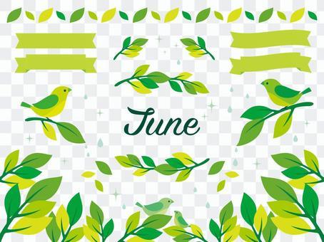 Illustration of June (3)
