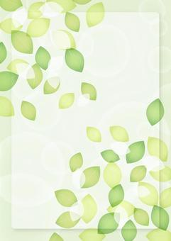 Fresh green leaves and frame background