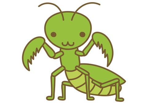 Illustration of a cute mantis
