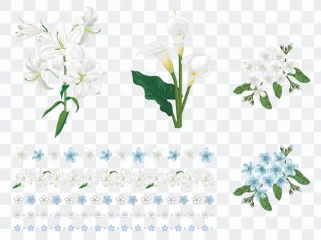 White flower set 01
