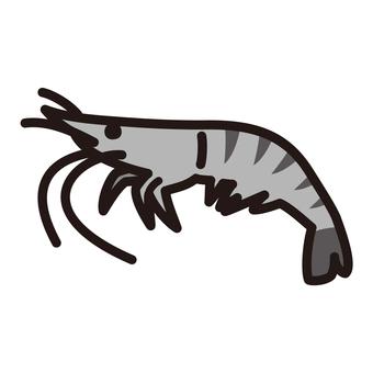 Shrimp black tiger prawn