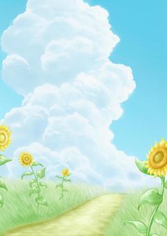 Sunflower summer vacation background