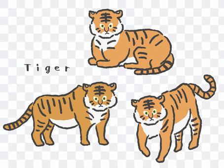 Tiger illustration 3-piece set