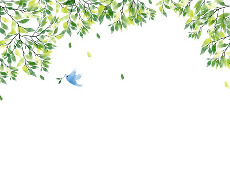 Fresh green and bird background