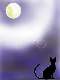 輝く月と猫