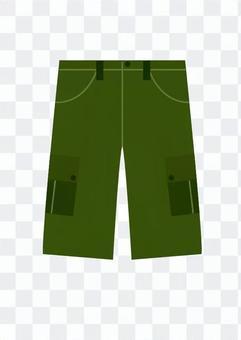 Shorts pants (green)
