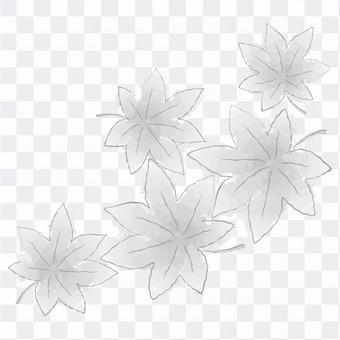 楓 -  02單色