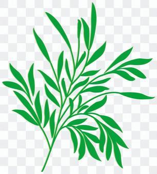植物160430