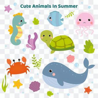 Cute sea companion set