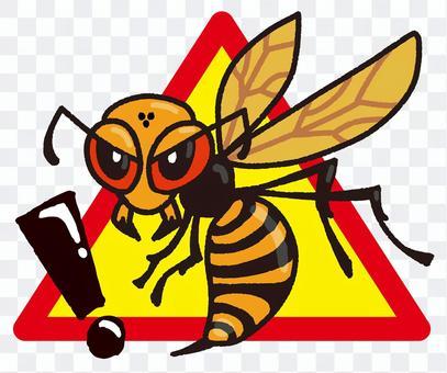 Beware of wasps