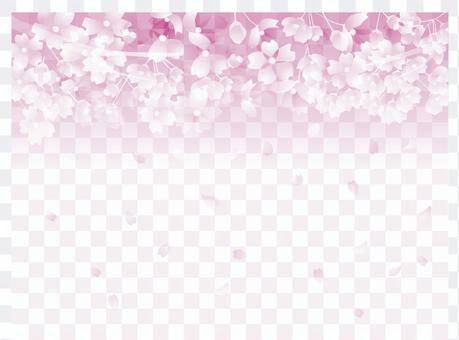 櫻花圖案3-2-3