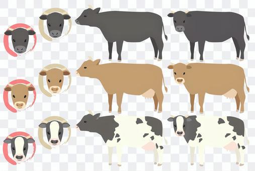 牛セット乳製品や焼肉などに