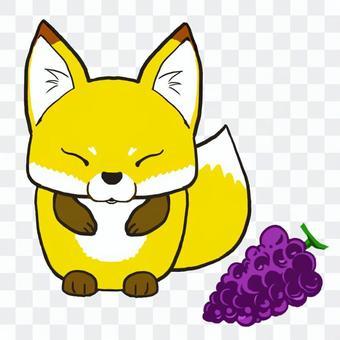 圓狐狸和葡萄