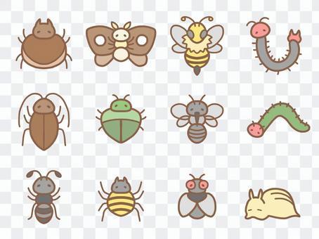 令人討厭的昆蟲摘要