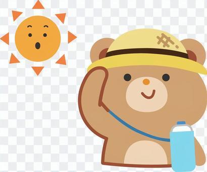戴帽子的熊避免陽光直射