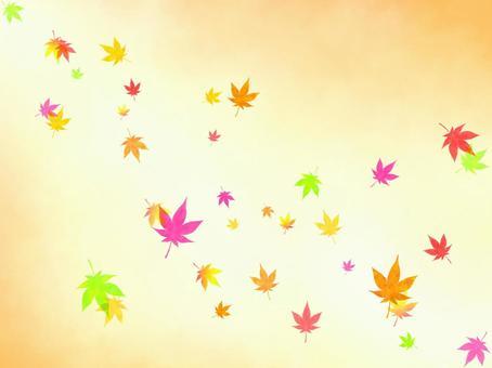 槭樹背景(橙色)