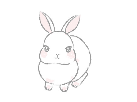 A little Japanese and simple white rabbit