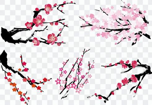 Plum cherry blossom peach blossom watercolor winter spring sumi-e style plant brush writing tree branch