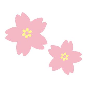 Pop Sakura