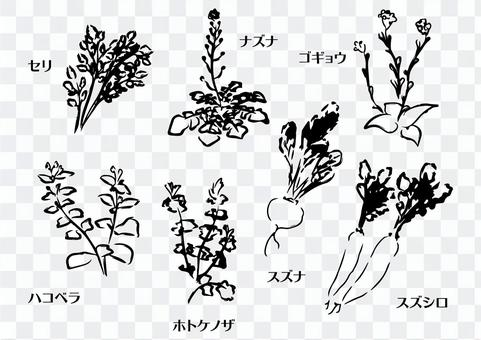 Hand-painted monochrome material set of seven spring herbs
