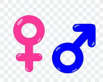 男性和女性