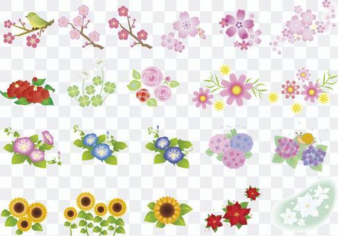 Various flowers 2