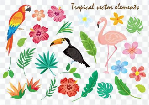 Tropical materials Summary
