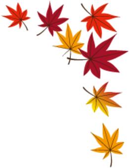 낙엽 15