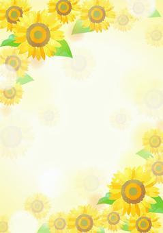 柔和的顏色向日葵背景2