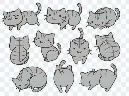 Deformed Sabatra Cat