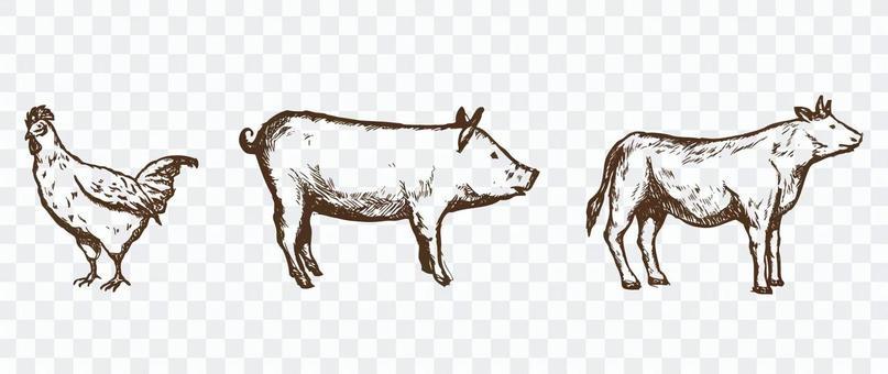 手繪的豬豬牛肉
