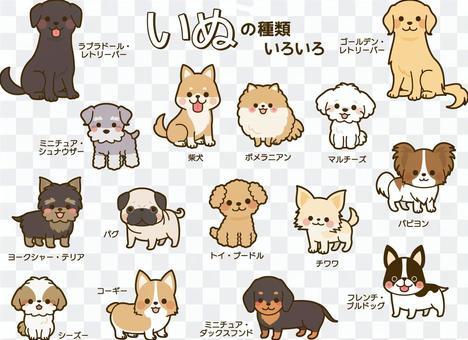 犬の種類いろいろセット