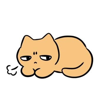 脾氣暴躁的貓