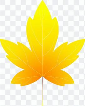 aiオレンジ色のカエデ6・1点