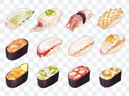 寿司のイラスト(イカ、タコ)