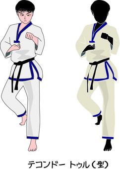 Taekwondo Martial Arts Blow Korean stance