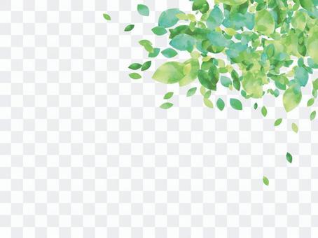 New green frame ver 04