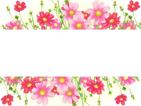 Flower Frame Card Rectangle-Autumn Cosmos