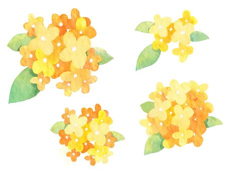 Watercolor Kanagi