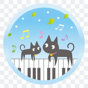 Cat music school