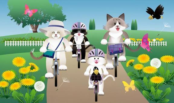 貓和自行車_03