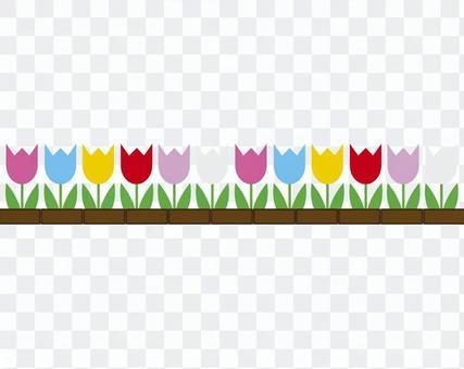 Tulip's flower bed