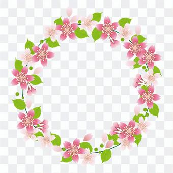 櫻花和葉子1