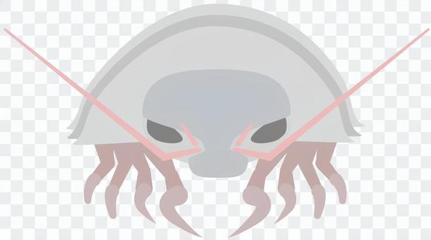 魚_深海生活_巨型甲蟲甲蟲